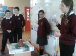 Junior Infants Science Week